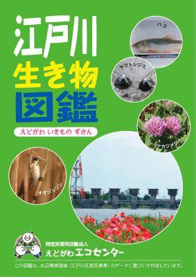 江戸川生き物図鑑