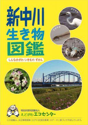 新中川表紙